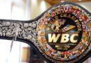 Artesanos mexiquenses elaboran el Cinturón Mestizo del Consejo Mundial de Boxeo